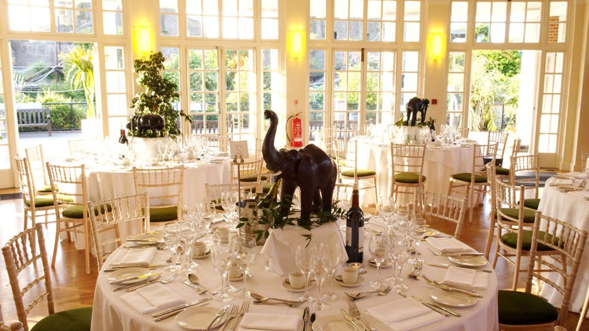 Dinner-setting-London-Zoo-autumn-wedding-1