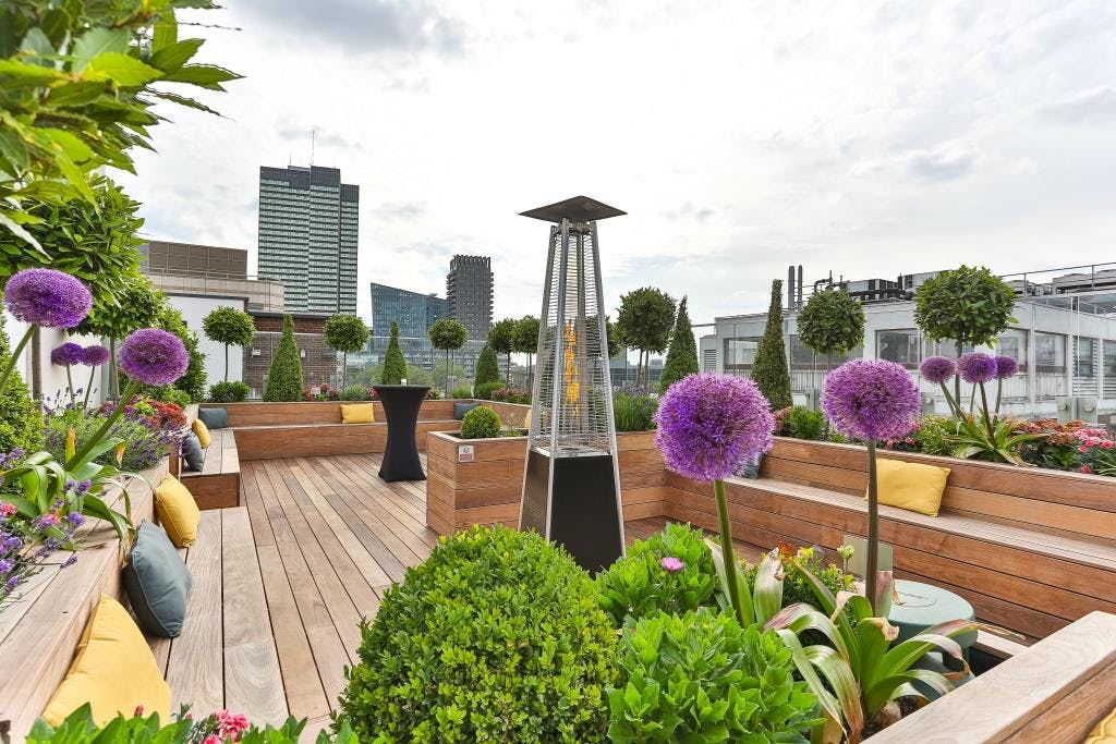 Garden roof terrace 30 euston road