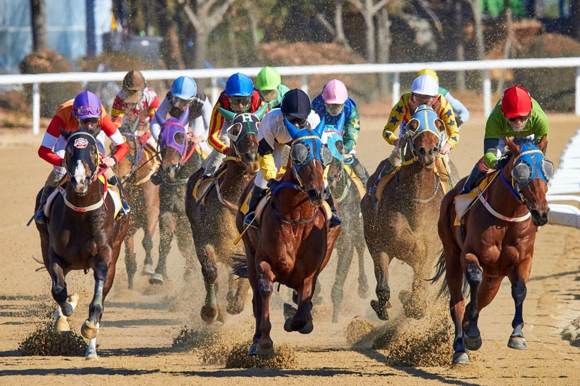 virtual races